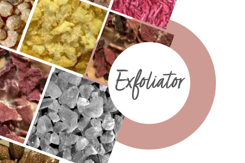 Lessonia - Exfoliator natural exfoliant for cosmetic products