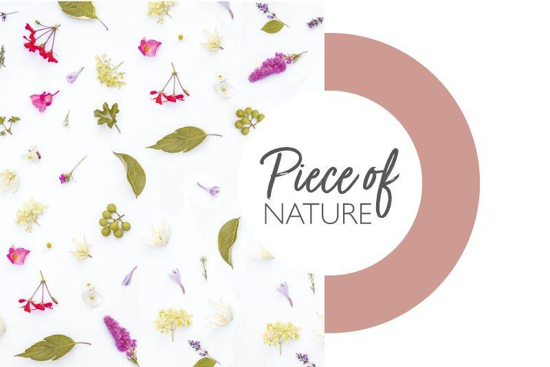Lessonia - Particules décoratives pétales de fleurs pour produits cosmétiques